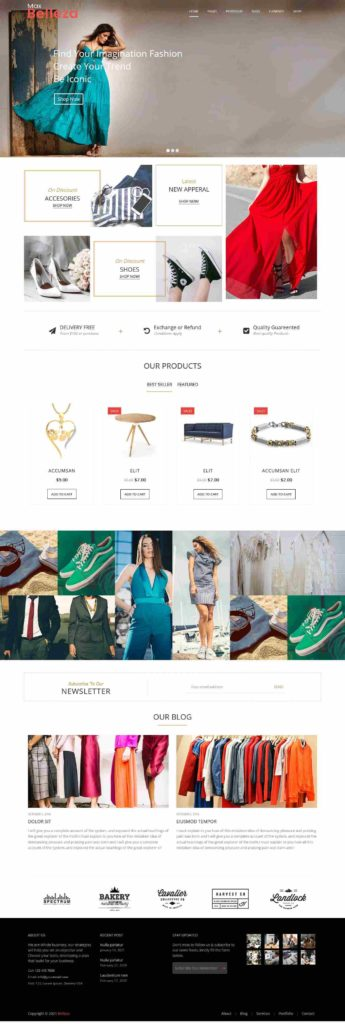 fashion store-2 wordpress theme
